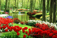 Belgia Olanda