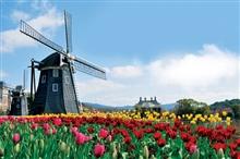 Belgia Olanda  Belgia Olanda